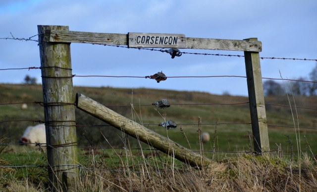 corsencon_sign