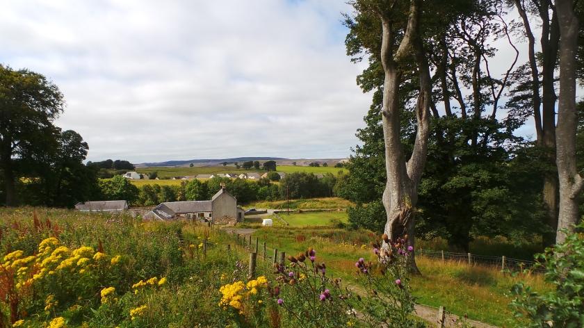 Knockshinnoch Farmhouse from the site of Knockshinnoch Tower