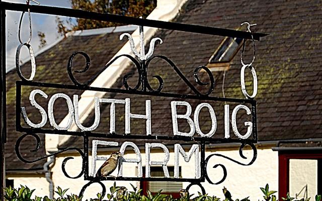 southboigxz